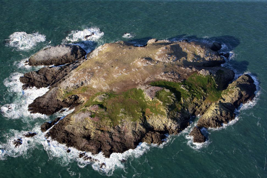 RCAHMW aerial photograph of Grassholm Island, viewed from the east, NPRN 404206